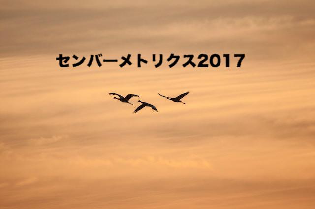 センバーメトリクス 2017